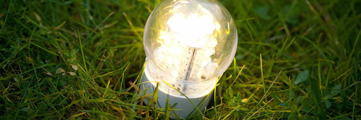 Strom sparen: Glühbirne im Gras